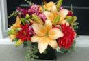 Цветок рождения людей, появившихся на свет, весной