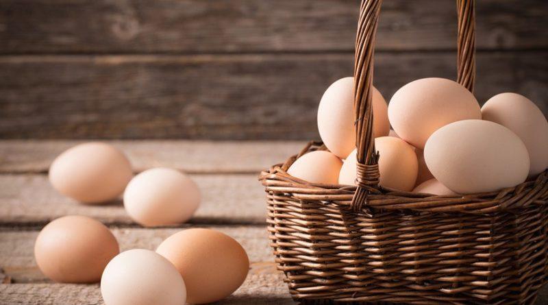 Искусственное куриное яйцо